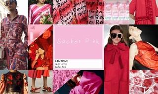 2020春游色彩:红装素裹