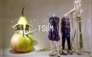 2015秋冬Tsum(百货)零售分析