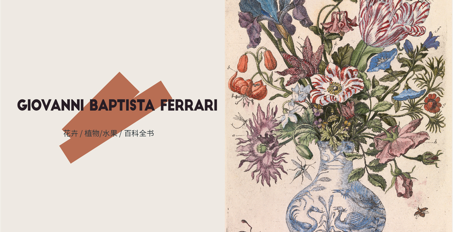 艺术家推荐:ChristianDior x Giovanni Battista Ferrari
